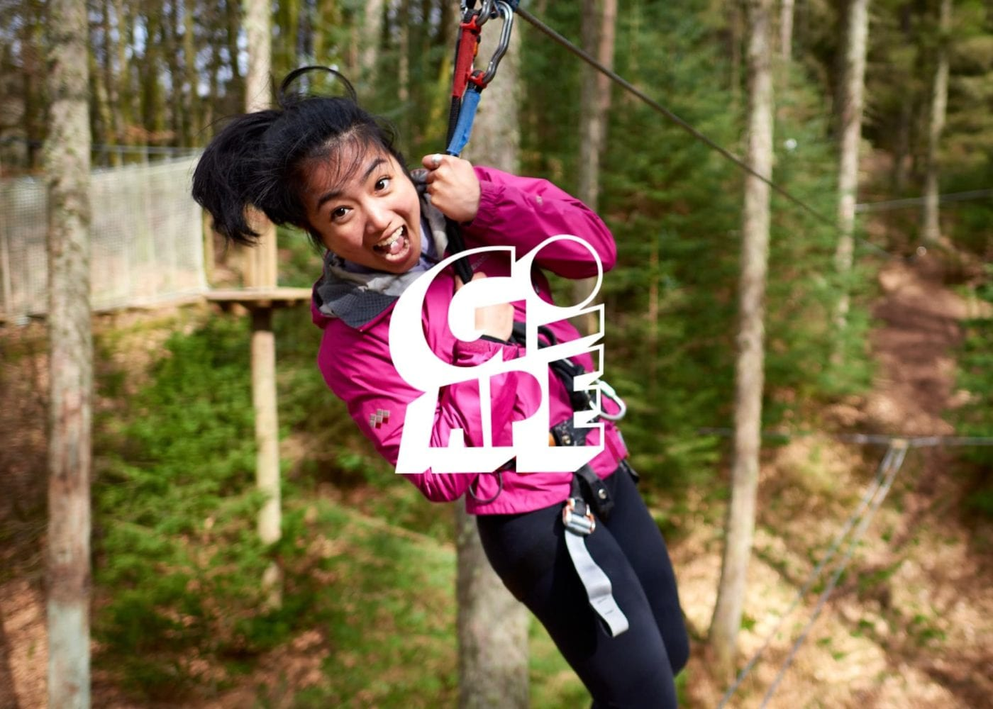 Go Ape corporate at Coombe Abbey