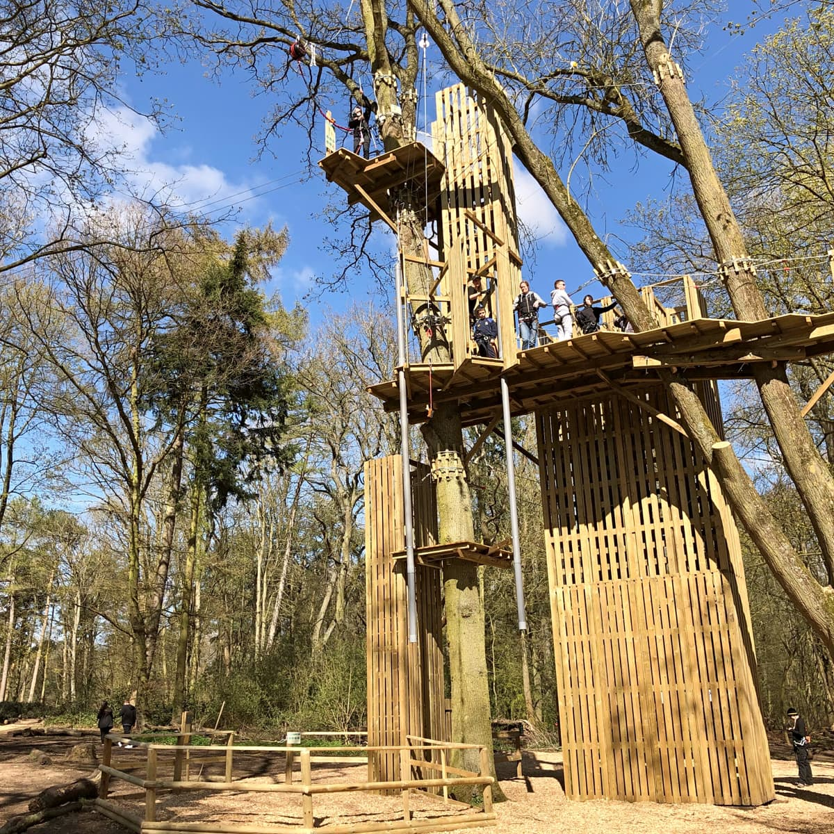 Go Ape deals at Coombe Abbey