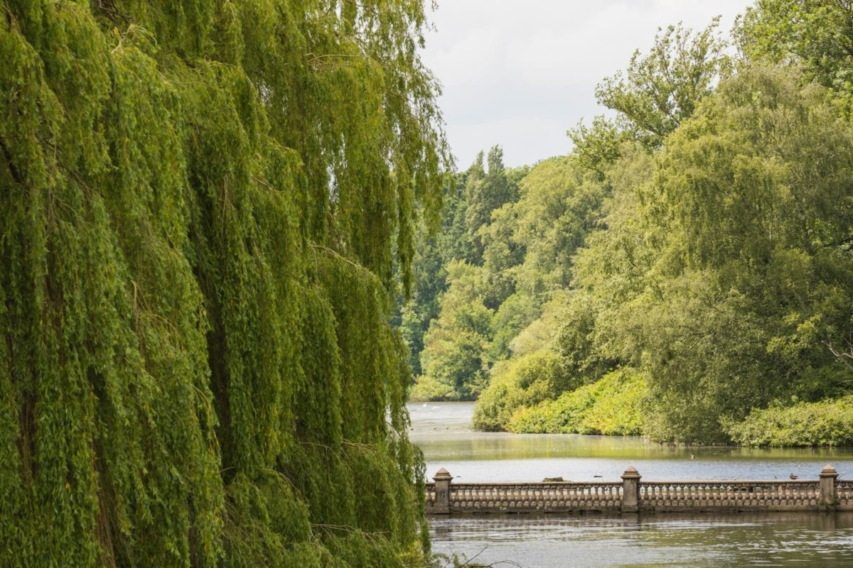 About Coombe Abbey Park
