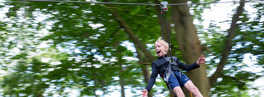 Go ape coombe abbey